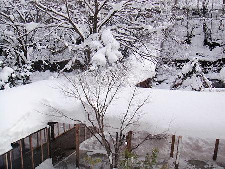 yunishikawa-DSC00272.jpg